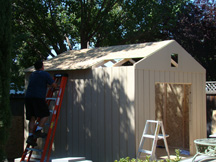 shed for blog