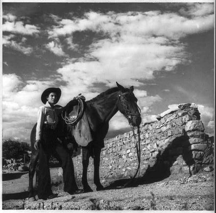 cowboy by fence, Arizona