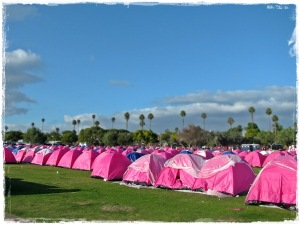 Tent City for 3-day Walk