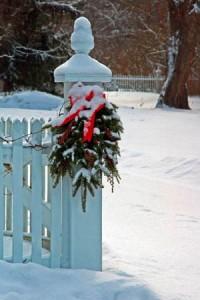 AoMS snowy post 2