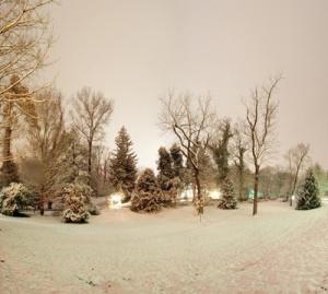 AoMS Snowy Trees 2