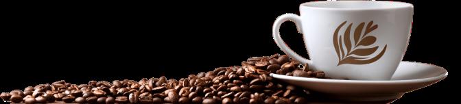 coffee-beans-0-1920x434