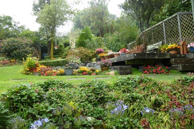 Kris Pearson's backyard
