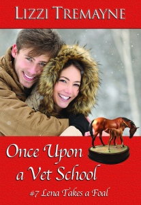 Traditional Christmas in Once Upon a Vet School